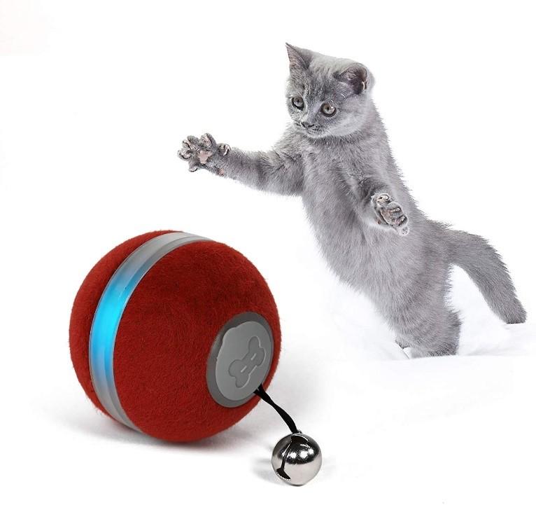 bola inteligente para gatos
