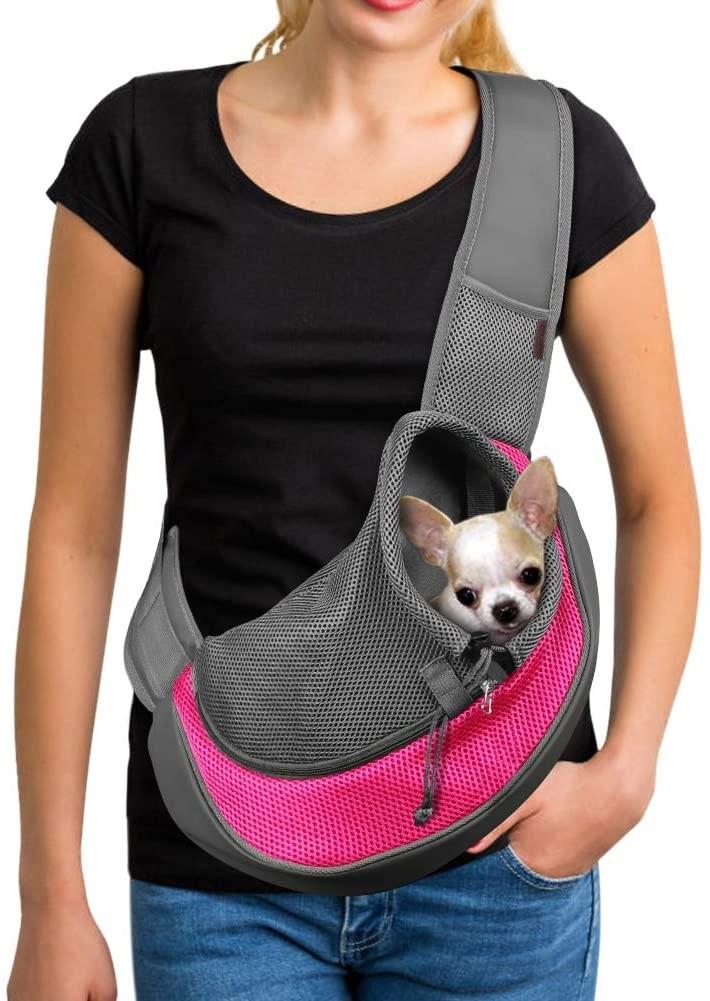 transportador para perros